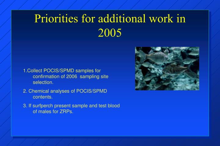 Priorities for additional work in 2005
