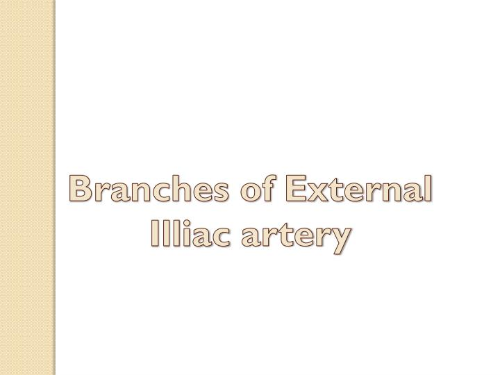 Branches of External