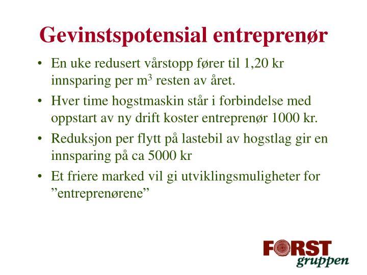 Gevinstspotensial entreprenør