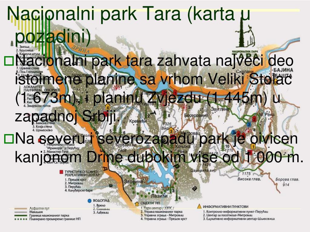 Ppt Nacionalni Park Tara Je Treci Po Povrsini U Srbiji Sa 19 200