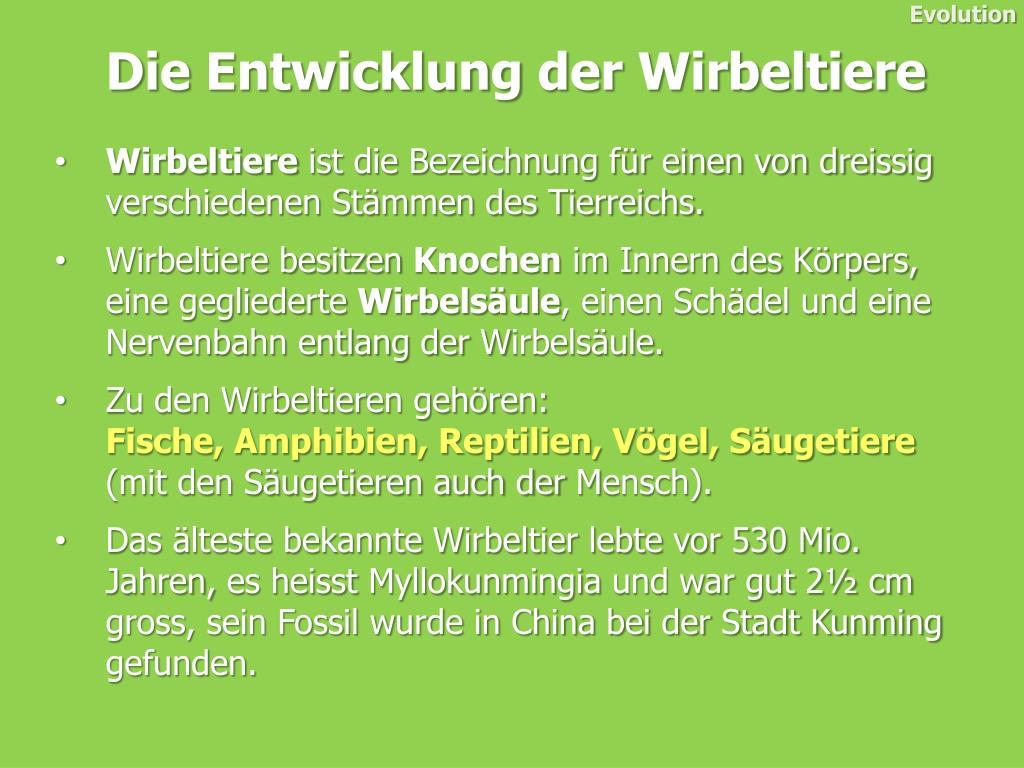 PPT - Die Entwicklung der Wirbeltiere PowerPoint Presentation - ID ...