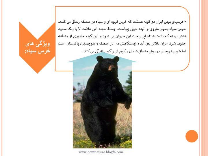 www.qomnature.blogfa.com
