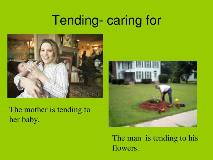 Tending- caring for