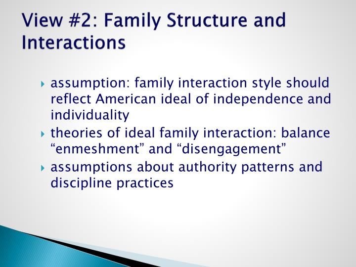 View #2: Family Structure and Interactions