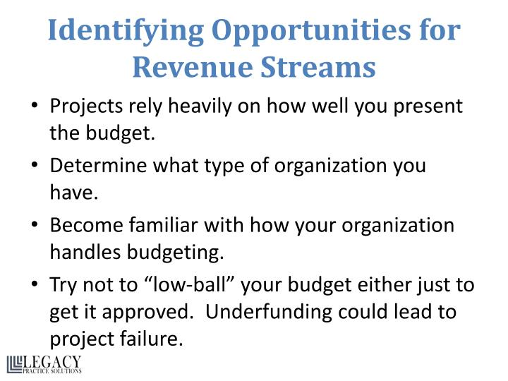 Identifying Opportunities for Revenue Streams