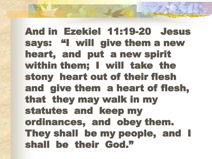 """And in  Ezekiel  11:19-20   Jesus  says:   """"I  will  give them a new heart,  and  put  a new spirit within them;  I  will  take  the stony  heart out of their flesh  and  give them  a heart of flesh,  that  they may walk in my statutes  and  keep my ordinances,  and  obey them.  They shall  be my people,  and  I shall  be  their  God."""""""