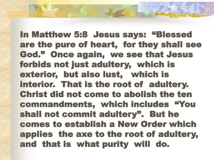 """In Matthew 5:8  Jesus says:  """"Blessed  are the pure of heart,  for they shall see God.""""  Once again,  we see that Jesus forbids not just adultery,  which is exterior,  but also lust,   which is interior.  That is the root of  adultery.  Christ did not come to abolish the ten commandments,  which includes  """"You shall not commit adultery"""".  But he comes to establish a New Order which applies  the axe to the root of adultery,  and  that is  what purity  will  do."""