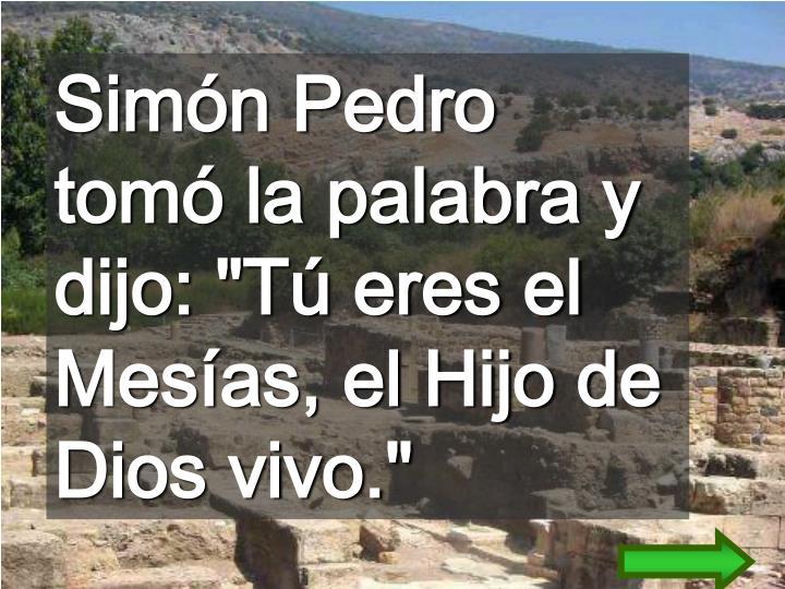 """Simón Pedro tomó la palabra y dijo: """"Tú eres el Mesías, el Hijo de Dios vivo."""""""