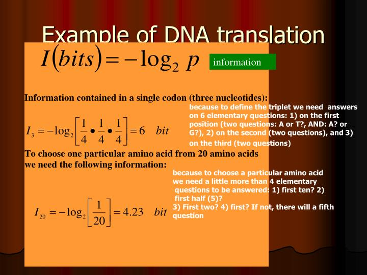 Example of DNA translation
