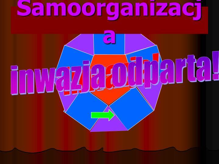 Samoorganizacja