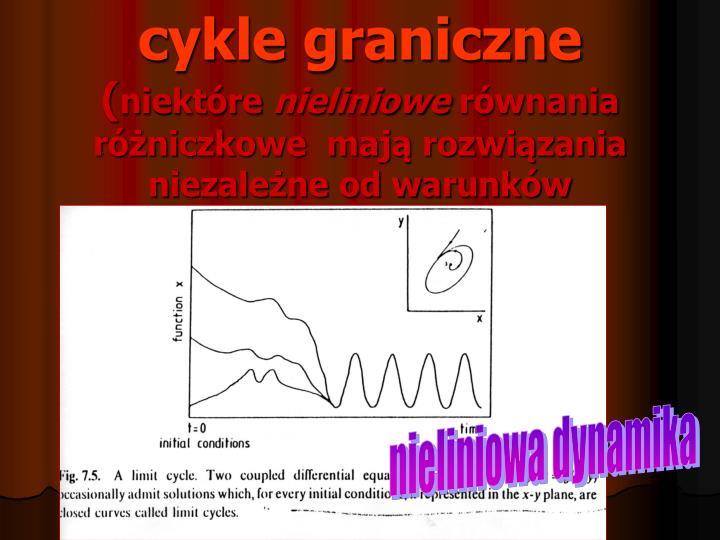 cykle graniczne