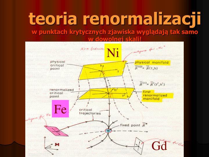 teoria renormalizacji