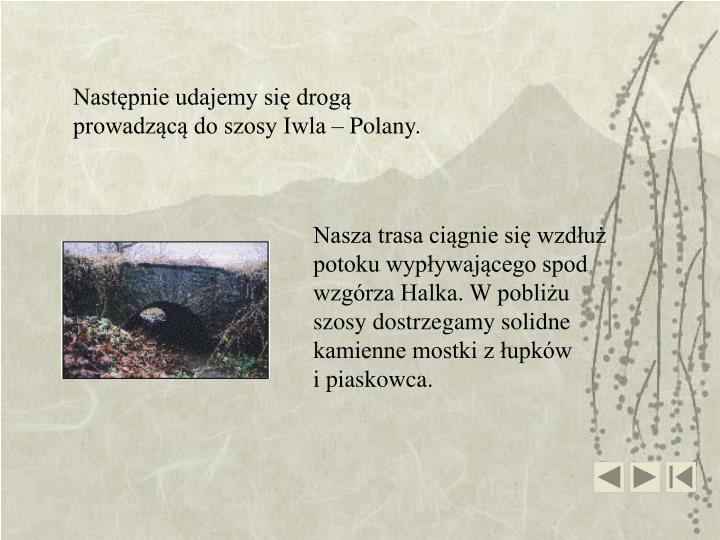 Następnie udajemy się drogą prowadzącą do szosy Iwla – Polany.