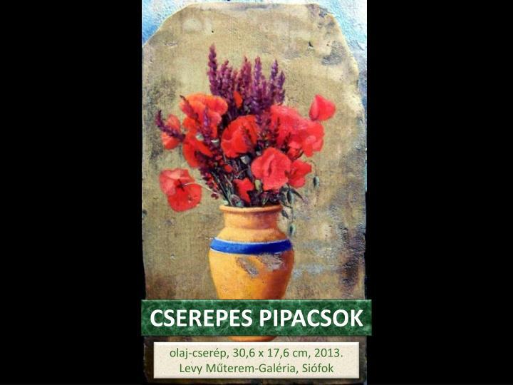 CSEREPES PIPACSOK