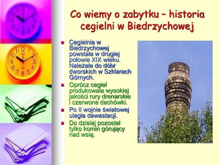 Co wiemy o zabytku – historia cegielni w Biedrzychowej