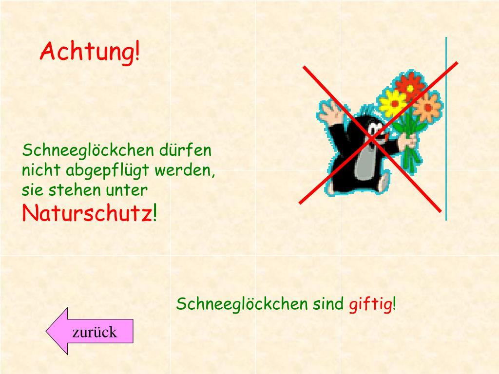 Berühmt PPT - Frühblüher PowerPoint Presentation - ID:5270098 @HC_67