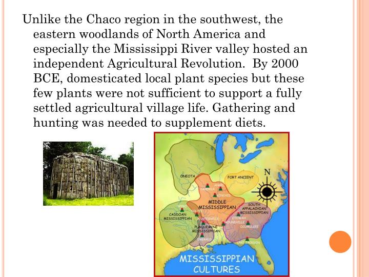 Unlike the Chaco region in the southwest, the eastern woodlands of North America and especially the Mississippi River valley hosted an independent Agricultural Revolution.  By 2000 BCE, domesticated local plant species but these few plants were not sufficient to support a fully settled agricultural village life. Gathering and hunting was needed to supplement diets.