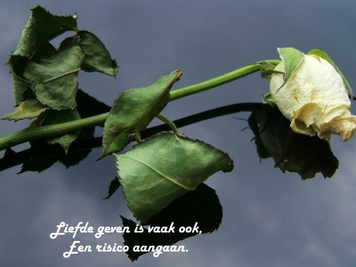 Liefde geven is vaak ook,