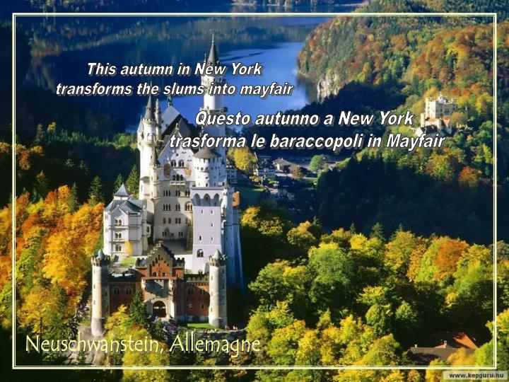 This autumn in New York