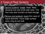 2 types of root systems
