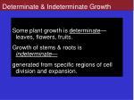 determinate indeterminate growth