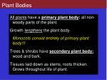 plant bodies
