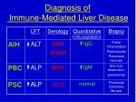 diagnosis of immune mediated liver disease