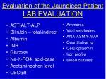 evaluation of the jaundiced patient lab evaluation