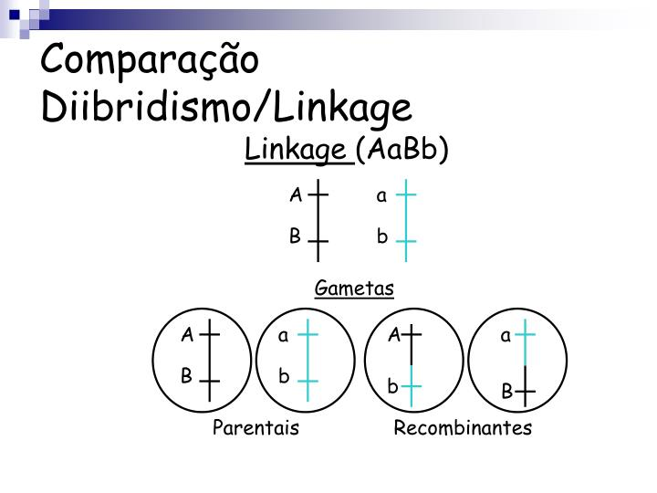 Comparação Diibridismo/Linkage