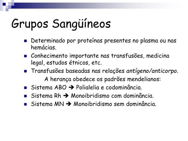 Grupos Sangüíneos