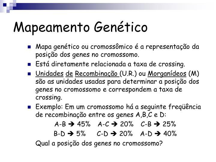Mapeamento Genético