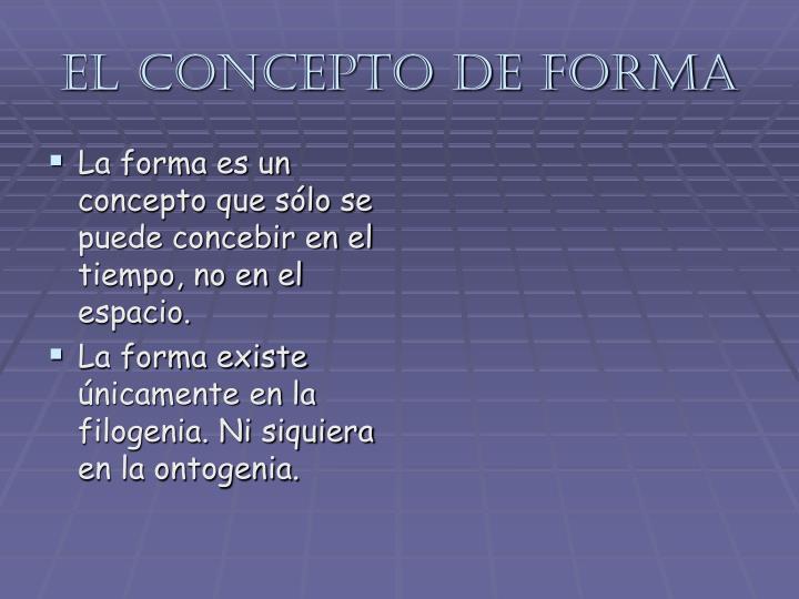 El concepto de forma