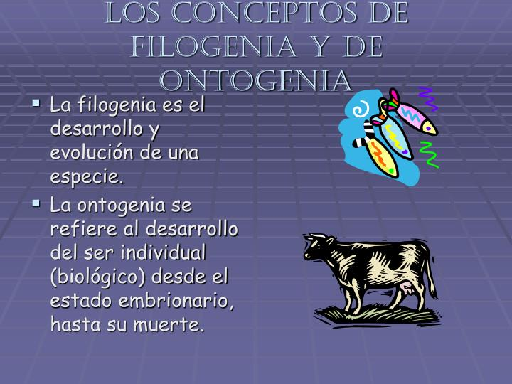 Los conceptos de filogenia y de ontogenia