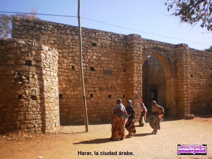 Harar, la ciudad árabe.