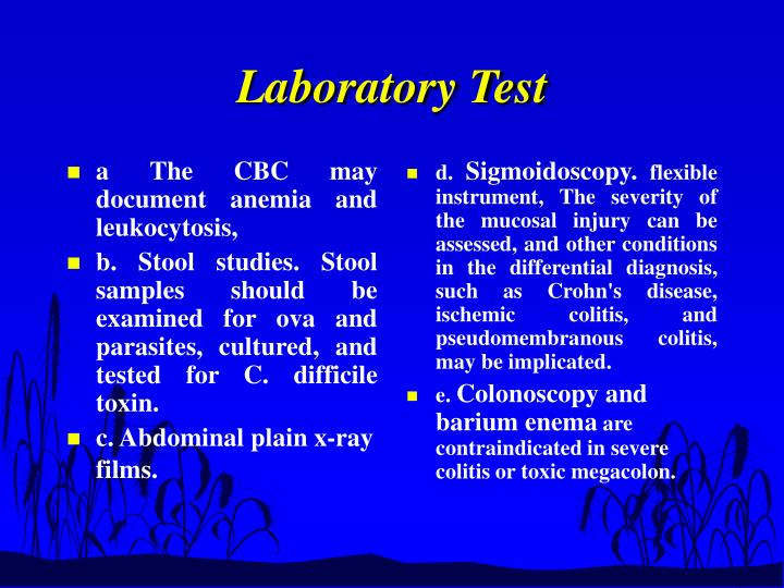 a The CBC may document anemia and leukocytosis,