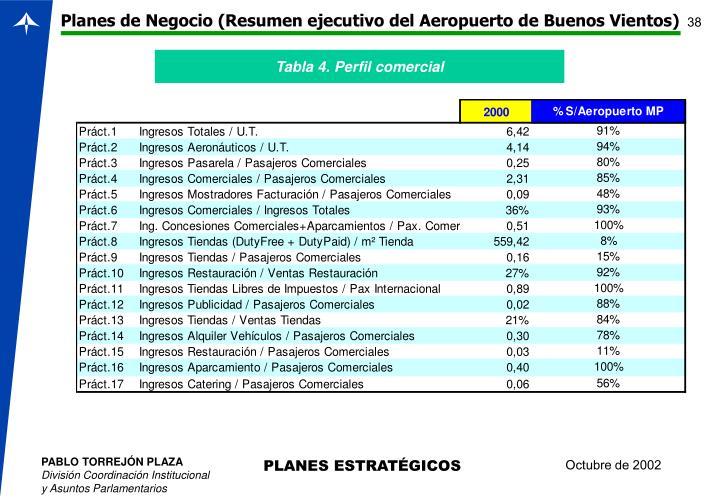 Planes de Negocio (Resumen ejecutivo del Aeropuerto de Buenos Vientos)