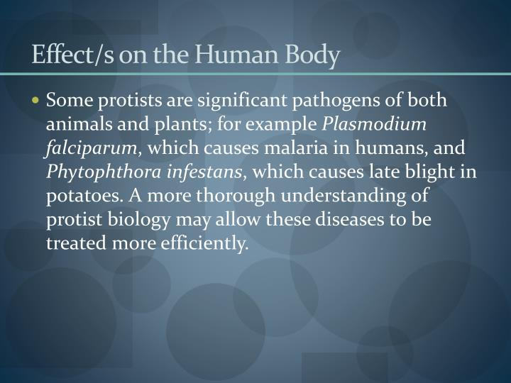 Effect/s on the Human Body