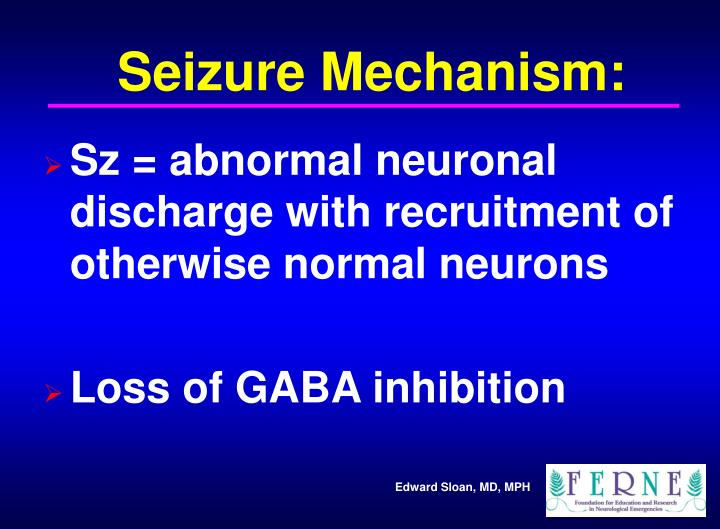 Seizure Mechanism: