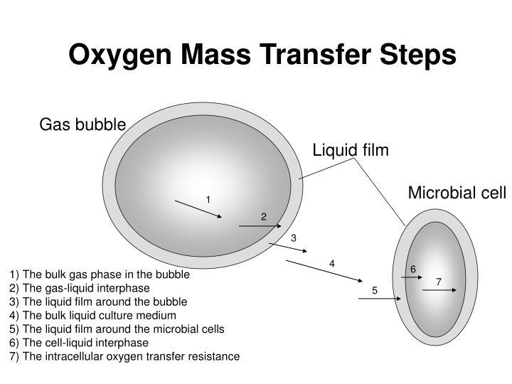 Oxygen Mass Transfer Steps