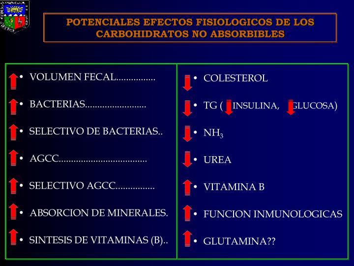 POTENCIALES EFECTOS FISIOLOGICOS DE LOS CARBOHIDRATOS NO ABSORBIBLES