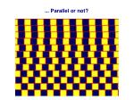 parallel or not