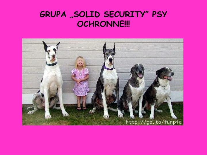 """GRUPA """"SOLID SECURITY"""" PSY OCHRONNE!!!"""