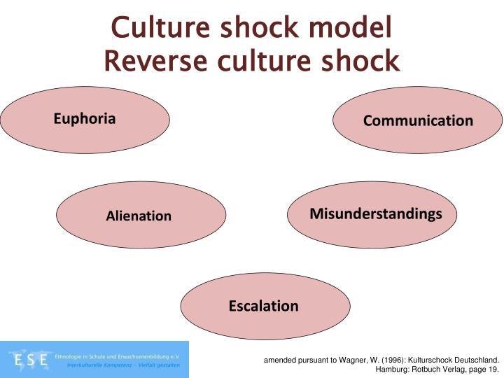 Culture shock model