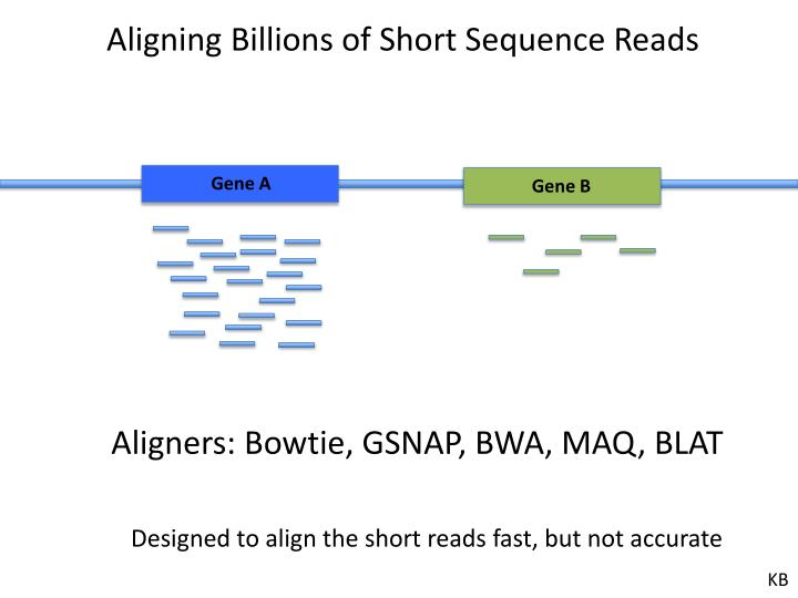 Aligning Billions of Short Sequence Reads
