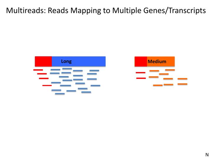 Multireads: Reads Mapping to Multiple Genes/Transcripts