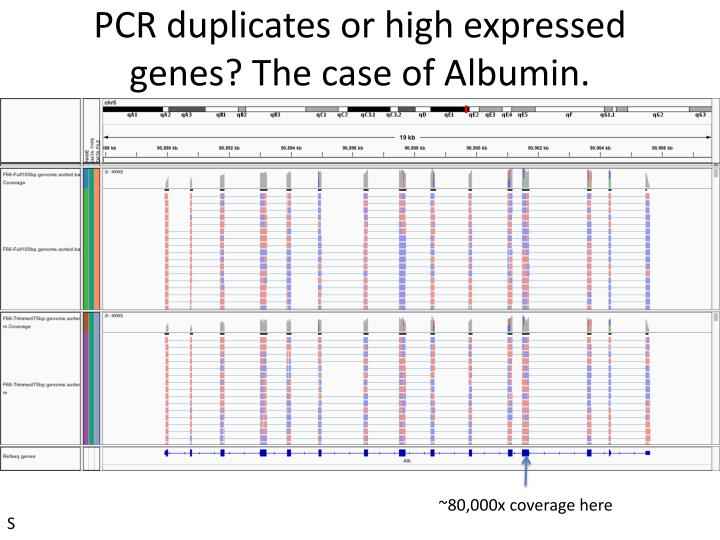 PCR duplicates or high expressed genes? The case of Albumin.