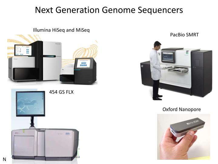 Next Generation Genome Sequencers