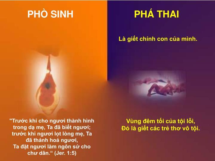 PHÒ SINH
