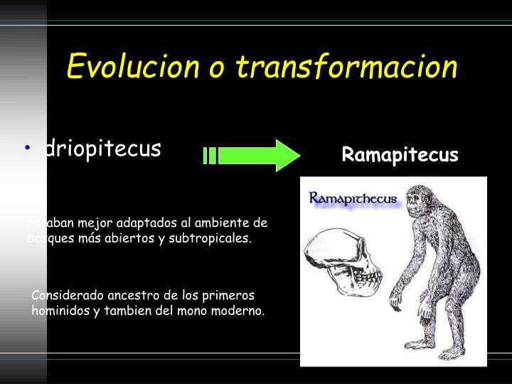 Evolucion o transformacion