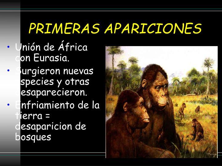 PRIMERAS APARICIONES